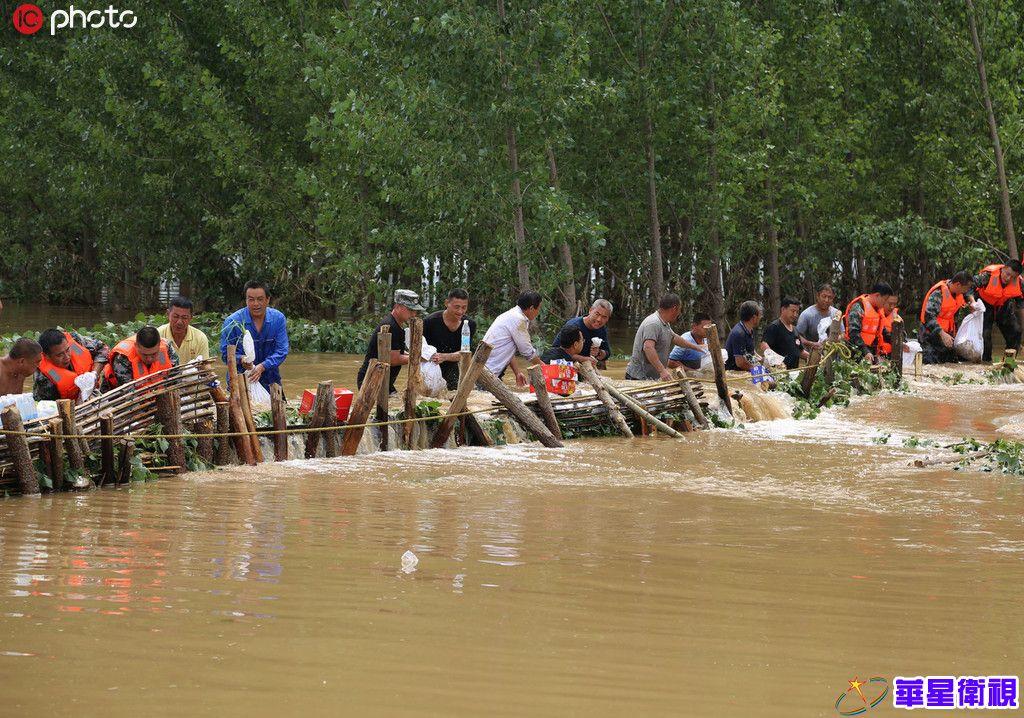 8月14日,山东省邹平市民兵和焦桥镇干部群众在围堵胜利河河水,以减少对周边农田的影响。