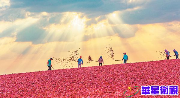 中国扶贫事业成就盘点:伟哉,中国扶贫!