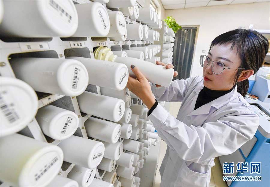 河北文安:打造基层优质医疗服务环境