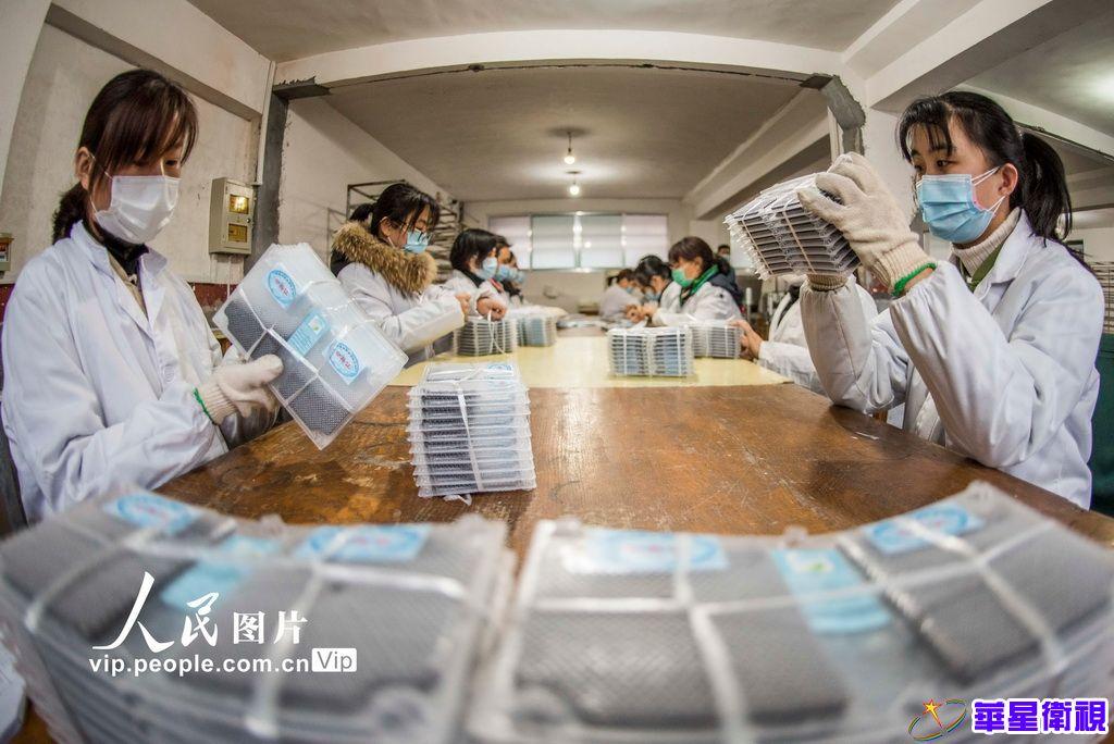 我国首批25万张蚕种顺利出口乌兹别克斯坦