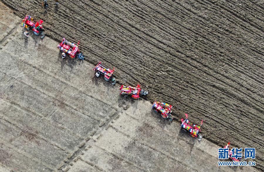 这五年,西藏粮食产量累计超过500万吨