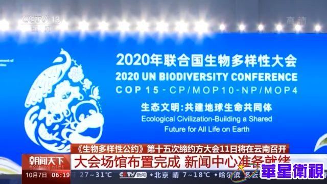 《生物多样性公约》第十五次缔约方大会11日将在云南召开 大会场馆布置完成